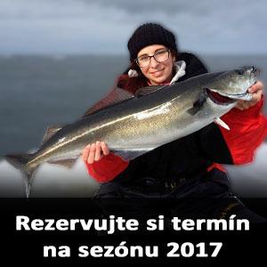 veiholmen4