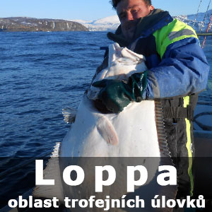 loppa2017