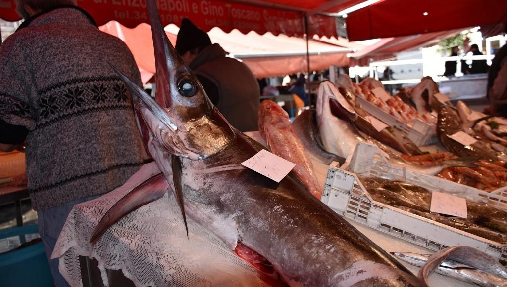 rybolov_sicilie_5