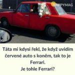 sarkastickych-vtipu-4-1024x1024