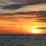 zapad-slunce-s-velrybou-5-9-2020